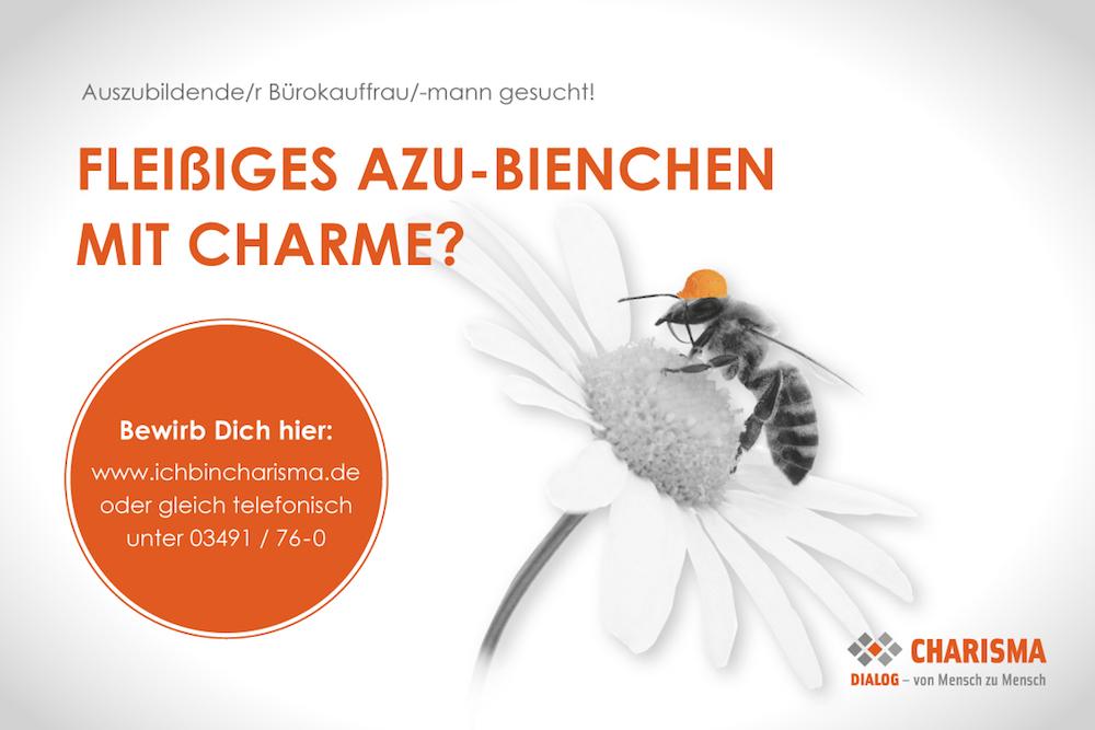 Fleißiges (Azu-)Bienchen gesucht!