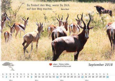 Afrika-Kalender-09-September