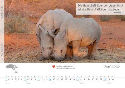 zukunft-afrika-ev-kalender-landschaften-tiere-2020-0007